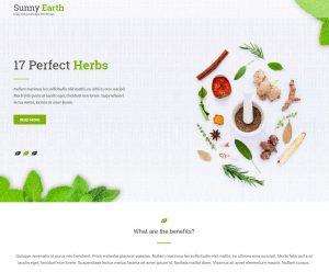 Sunny-earth.com
